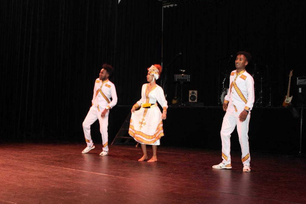 Dans - Traditionele Eritrese dans (Tigrinya etnische groep).